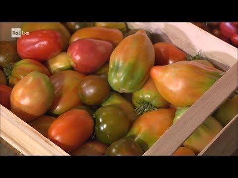 il pomodoro un super alimento