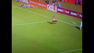 Gol de Fernandinho Flamengo x Vitória