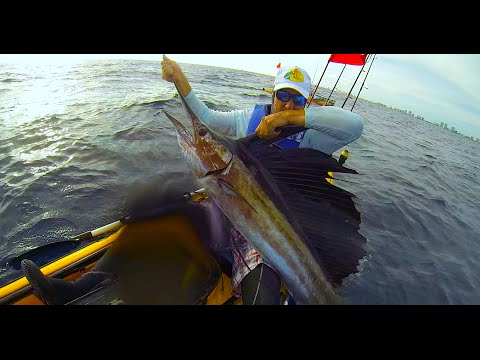 Kayak Fishing, 3rd Sailfish of 2014 Pompano Beach, FL