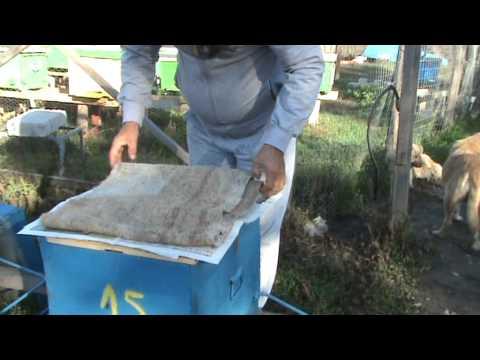Impachetarea pentru iernat a familiilor de albine
