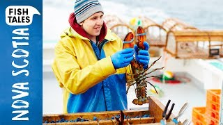 Sustainable LOBSTER Fishing in Nova Scotia | Bart van Olphen by Bart's Fish Tales