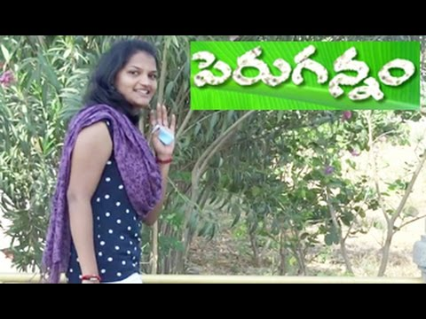 PERUGANNAM || Telugu Comedy Short Film By A Dream Light Production
