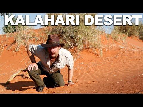 Survivorman | Season 2 | Episode 1 | Kalahari