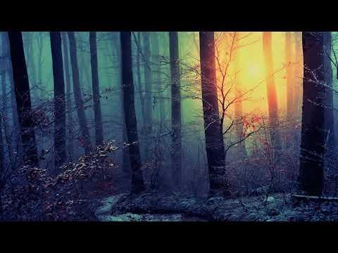 Darius Syrossian - Andranik [Gorge & Homm Remix]