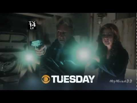 NCIS: Naval Criminal Investigative Service 9.05 (Preview)