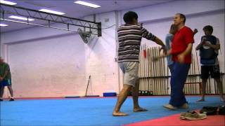 Training With Sifu 24.04.15 by Brett Adlard