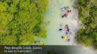 Dale (LIKE) y (SHARE) al video & (SUSCRIBETE) al canal!BÚSCANOS EN:DE AQUÍ PA PUERTO RICO BLOGGER: http://deaquipapuertoricooficial.blogspot.comDE AQUÍ PA PUERTO RICO INSTAGRAM: @deaquipapuertoricooDE AQUÍ PA PUERTO RICO GOOGLE: https://plus.google.com/u/1/Playa Manglillo Grande, ubicada en el pueblo de Guánica. una de las mas soleadas, hermosas y recreativas en el área sur. Le dedico el video a las personas que me pidieron que los grabara y no publique el video hasta ahora. Lo siento mucho por haberme tardado mas de 7 meses. Espero que lo vean y se recuerden! Comenten si recuerdan algo de lo que escribi!!! Sorry DAPPR!