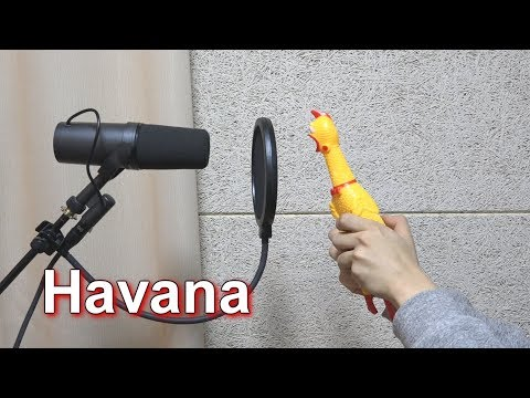 Camila Cabello - Havana 'Chicken Cover'