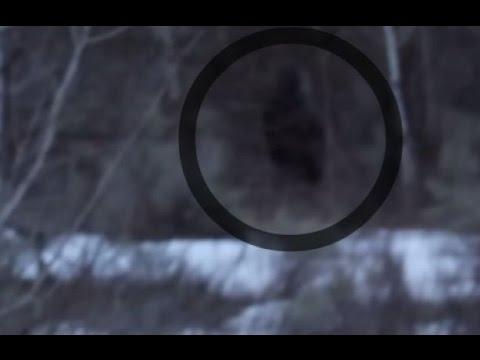 Possible Bigfoot Sighting – February 2016