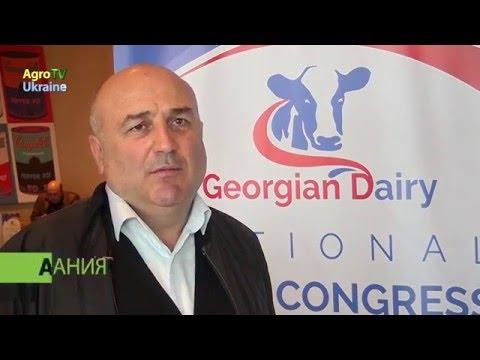 Експорт знаний: украинские молочники стали примером для Грузии