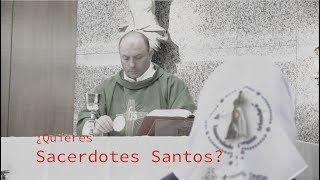 Sin sacerdotes nos faltaría lo más importante: la Eucaristía y los Sacramentos