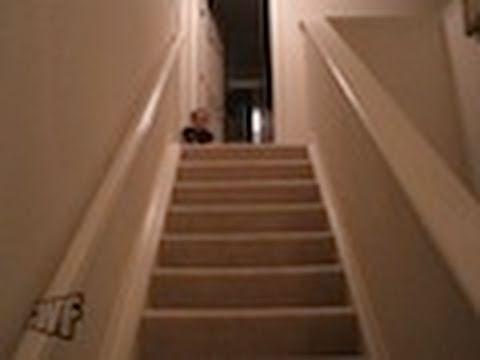 questo bambino ha scoperto il modo più veloce per scendere le scale!
