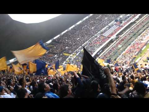 Dale Dale U, Dale Azul y Oro en el Azteca - La Rebel - Pumas