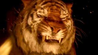 Le livre de la jungle: la bande annonce VF du film