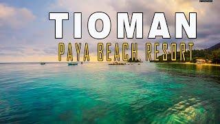 Nonton Tioman Island Paya Beach Resort 2016 | Zhiyun- Z1 Evolution Gimbal + GoPro | Film Subtitle Indonesia Streaming Movie Download