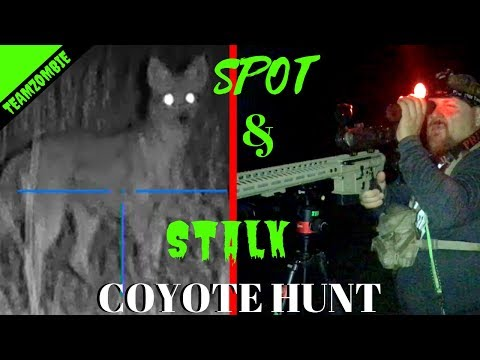 Spot And Stalk Coyote  Hunting Using  Pulsar Helion And Atn 4k Pro