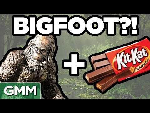 9 • E101___  _    Real Bigfoot Facts (GAME)