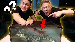 Video CHALLENGE DEMIAN PEGANG BUAYA!!! WHAT'S IN THE BOX UNDERWATER!! MP3, 3GP, MP4, WEBM, AVI, FLV Mei 2019