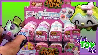 """We open up a FULL CASE of 24 Animal Jam Adopt-a-Pet Igloos Series 2!! What pets will we add to our collection?Check out Bin's Gaming Channel for more AJ: SUBSCRIBE and never miss a video! http://www.youtube.com/subscription_center?add_user=BinsToyBinAbout Bin's Toy Bin →Adventures in toy collecting! Join husband and  wife team, Bin and Jon (and their son Teagan, too) as they review the latest (and sometimes not-so-latest) toys in their own unique way! Check back daily for new videos!  Also be sure to visit our 2nd YouTube channel for our Family Vlogs!GET YOUR OFFICIAL BIN'S TOY BIN GEAR! →  http://binstoybin.spreadshirt.com/Follow Bin & Jon → Bin's Toy Bin Family Vlogs (Our 2nd YouTube Channel): http://www.youtube.com/BinsToyBinTravelOfficial Site: http://binstoybin.com/IG: @binstoybinFB: https://www.facebook.com/BinsToyBinSnapchat: real_binstoybinTwitter: @BinsToyBinG+: https://plus.google.com/+BinsToyBinMUSIC USED:""""Beach Front Property"""" by Silent Partner from YouTube Audio Library"""