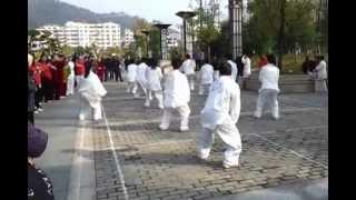 中国江西省南昌市太極比賽2012 - 冷先鋒團體表演陳式24式太極拳