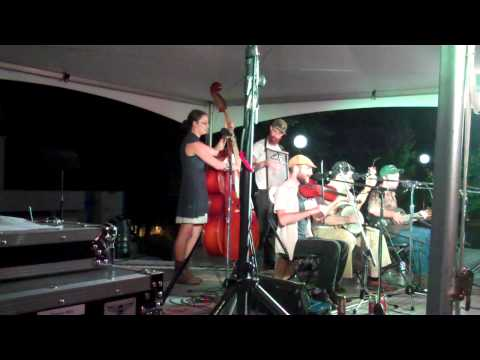 The Hokum High Rollers' Performance at the 10th Annual National Jug Band Jubilee