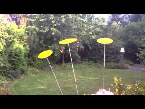 Cazador-del-sol Sonnenfänger, Sonnendiskus, Sonnenscheibe als 3er Set in privater Anwendung