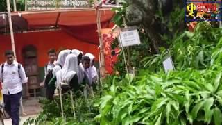 ফলদ বৃক্ষ মেলা-2019