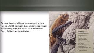 Sangen om flaggermusa - Pipistrellus