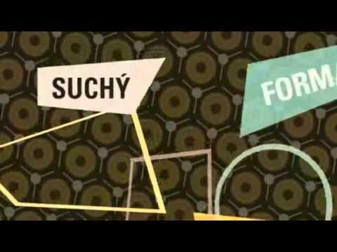 placená - Informace o filmu na http://www.sms.cz/film/dobre-placena-prochazka Hudební, Česká republika, 2009, 85 min. Režie: Miloš Forman, Petr Forman Hrají: Petr Stac...