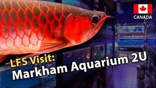 Markham (ON) Canada  city images : LFS Visit: Markham Aquarium 2U (Canada Special!)
