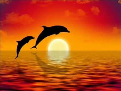 Relajación y equilibrio con Delfines, Meditación guiada (видео)