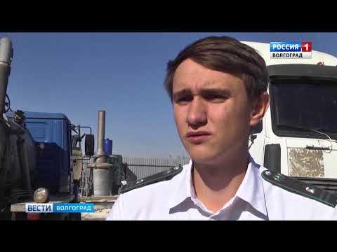 О выявлении запрещенной к ввозу продукции в Волгоградской области