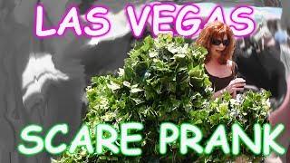 Video THE FUNNIEST BUSHMAN SCARE PRANKS EVER - The Las Vegas Bushman Prank - Episodes 5-8 FUNNY VIDEO MP3, 3GP, MP4, WEBM, AVI, FLV Juli 2018