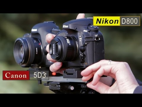 drumat5280 - http://www.learningdslrvideo.com/5d-mark-iii-vs-nikon-d800/ I'm really excited to have reviewed both with Canon 5D Mark III and the D800. I have been shootin...