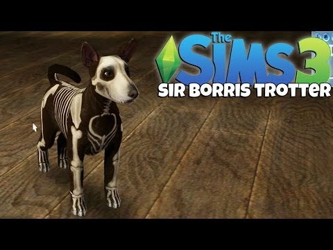 The Sims - Hello everybody! And welcome to my 'Sims 3' let's play! This is going to be a short series! But I hope you enjoy! Welcome to the life of 'Sir Fancy Borris Tr...