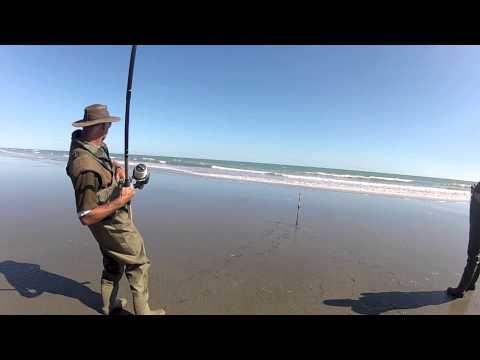 surfcasting: dentice di 7,5 kg