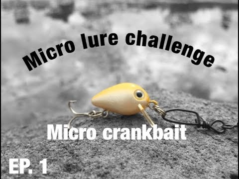 Video Micro lure catches big fish! (EP.1) download in MP3, 3GP, MP4, WEBM, AVI, FLV January 2017