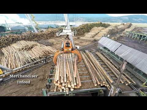 Logs to Lumber An aerial journey through the