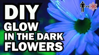 DIY Glow in the Dark Flowers - Man Vs Science #6 by ThreadBanger