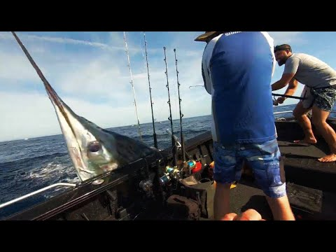We Gonna Need A Bigger Boat! - When Marlin Attack - Youfishtv