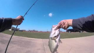 Burleson (TX) United States  city pictures gallery : 3+ Pound Bass Caught At Burleson,TX