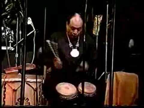 congas y bongo solos