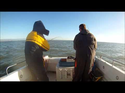 Sea Angling uk Whiting fishing solent_A valaha feltöltött legjobb horgász videók