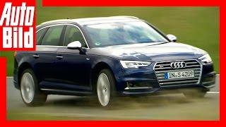 Fahrbericht / Testfahrt / Review / Audi S4 Avant (2016) / A4 im Sportanzug by Auto Bild