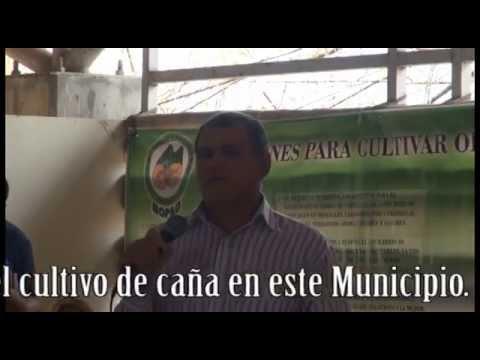 Aprueban ordenanza municipal ambiental en Tecoluca