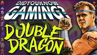 Video Double Dragon - Did You Know Gaming? Feat. Matt (Super Best Friends) MP3, 3GP, MP4, WEBM, AVI, FLV Desember 2017