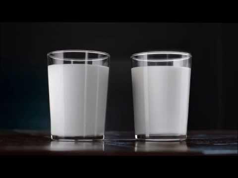 JUUSTOPORTTI – Vapaan lehmän maito