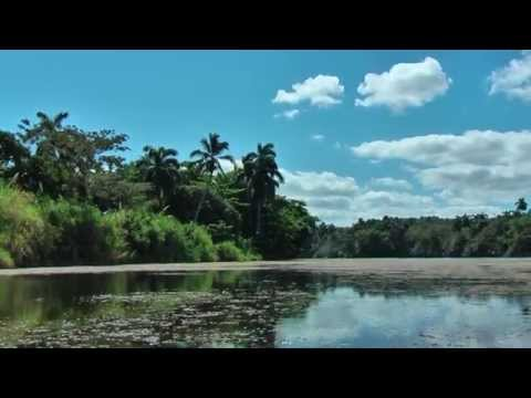 Boat trip on the river Toa in Baracoa Cuba