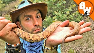 How Deadly is the Copperhead?! by Brave Wilderness
