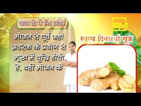 Use of ginger to increase appetite
